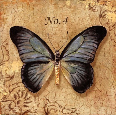 Clair's Butterfly I art print by Unknown for $8.75 CAD