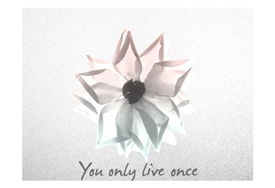 You Only Live Once Rose art print by Albert Koetsier for $22.50 CAD