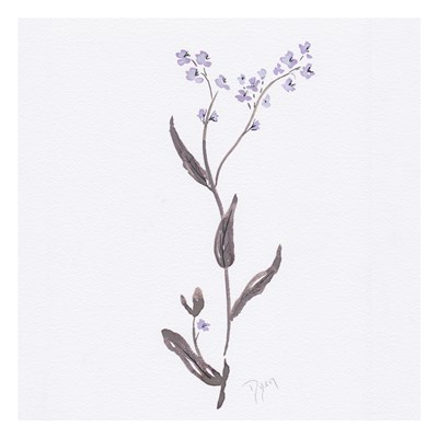 Lavender Wildflowers I art print by Beverly Dyer for $18.75 CAD