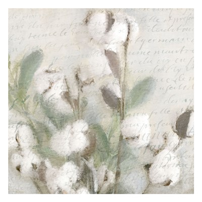 Soft Cotton 2 art print by Kimberly Allen for $18.75 CAD