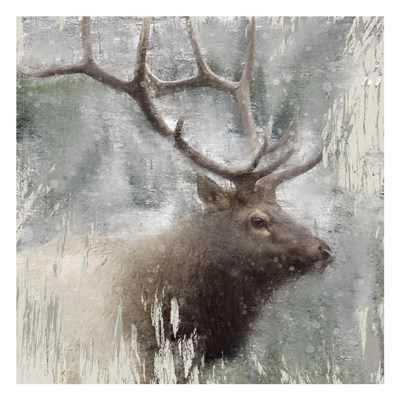 Wildlife 2 art print by Kimberly Allen for $18.75 CAD