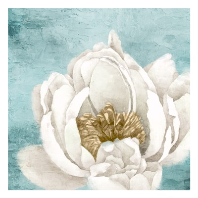 White Peony 1 art print by Kimberly Allen for $18.75 CAD