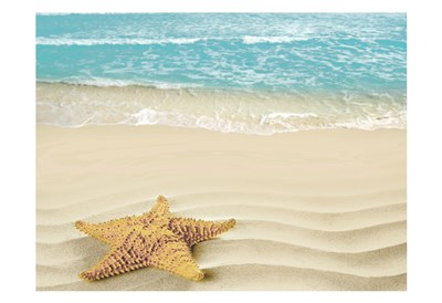 Beach Star art print by May for $22.50 CAD