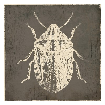 Bug Life Four art print by Milli Villa for $18.75 CAD