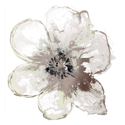 Floral-White art print by Victoria Brown for $18.75 CAD