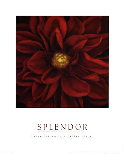 Splendor - Red Pool art print by Unknown for $17.50 CAD