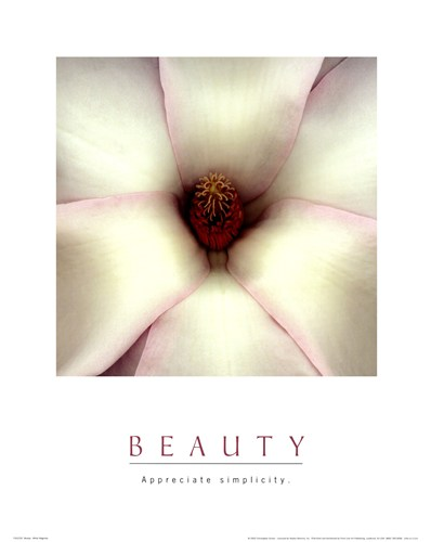 Beauty - White Magnolia art print by Unknown for $17.50 CAD