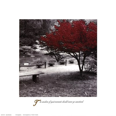 Inspirational - Quiet Moments art print by Unknown for $26.25 CAD