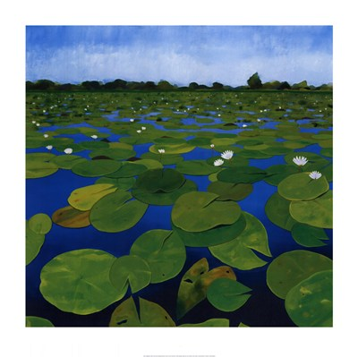 Waterlilies art print by Alexander Hamawi for $35.00 CAD