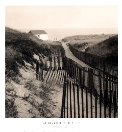 Dune Fence art print by Christine Triebert for $22.50 CAD