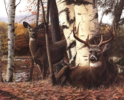 Autumnos Majesty art print by Kevin Daniel for $26.25 CAD