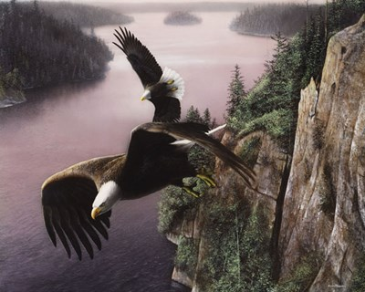 Wings Over the St. Croix art print by Kevin Daniel for $32.50 CAD