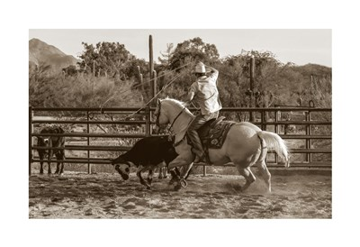 Ropin' Monte art print by Barry Hart for $20.00 CAD