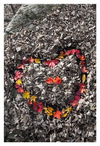 Love in the Leaves art print by Orah Moore for $20.00 CAD