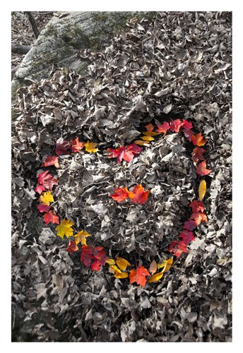 Love in the Leaves art print by Orah Moore for $60.00 CAD