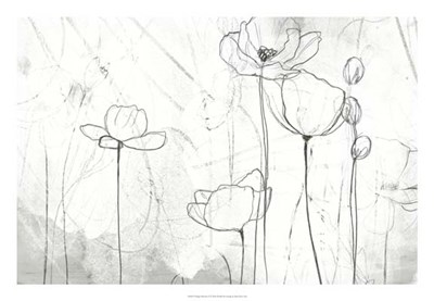 Poppy Sketches II art print by June Erica Vess for $56.25 CAD