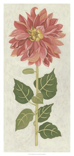 Non-Embellished Dahlia I art print by Chariklia Zarris for $106.25 CAD