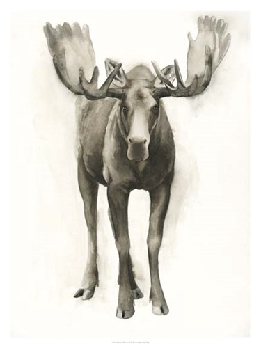 Majestic Wildlife I art print by Grace Popp for $100.00 CAD