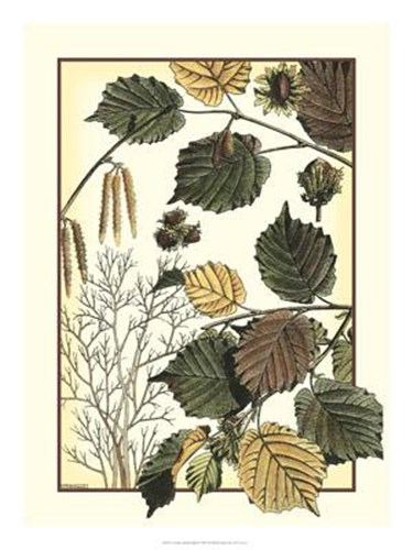 Arts And Crafts Hazelnut art print by M. P. Verneuil for $67.50 CAD