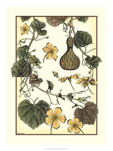 Arts And Crafts Gourd art print by M. P. Verneuil for $67.50 CAD