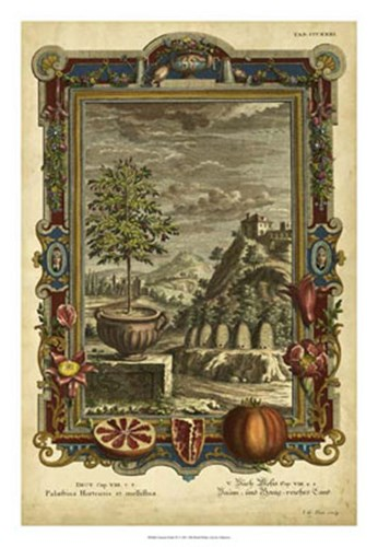 Genesis Fruits IV art print by Unknown for $56.25 CAD