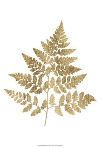 Graphic Gold Fern I art print by Studio W for $21.25 CAD