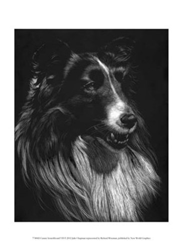 Canine Scratchboard VII art print by Julie Chapman for $13.75 CAD