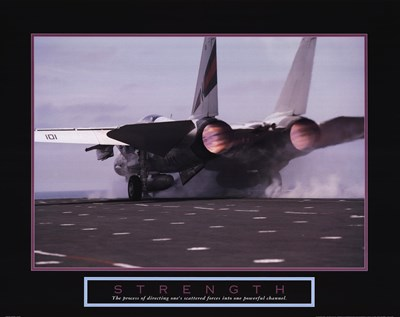 Strength - Aircraft art print by Unknown for $25.00 CAD