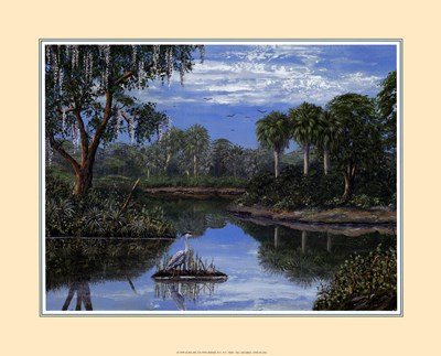 Florida Wetlands art print by Jack and Jackie for $18.75 CAD