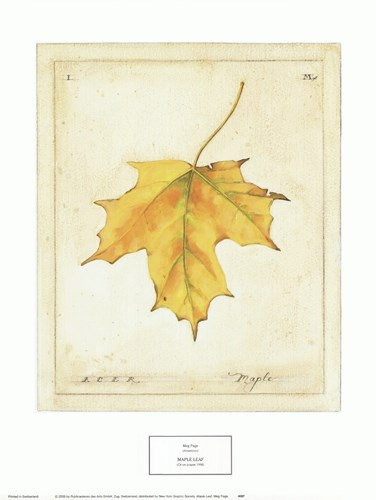 Maple Leaf art print by Meg Page for $25.00 CAD