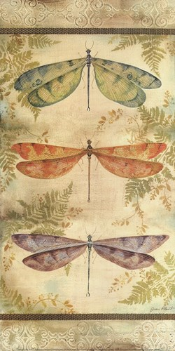 Classical Dragonfly Panel art print by Jean Plout for $31.25 CAD