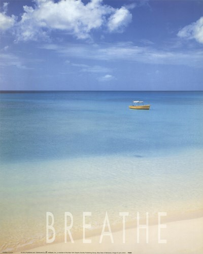 Blue Seas of Barbados art print by Larry Ulrich for $22.50 CAD