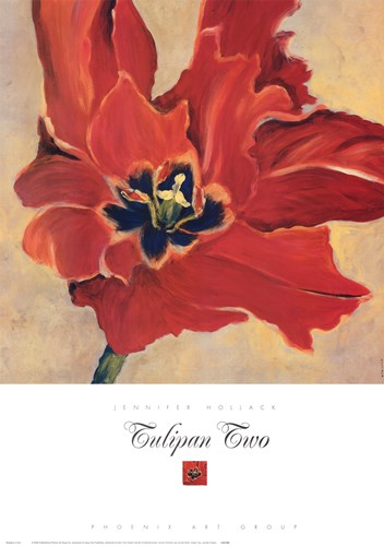 Tulipan Two art print by Jennifer Hollack for $37.50 CAD