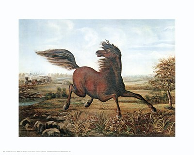 Neigh of an Iron Horse art print by Salvador Dali for $20.00 CAD