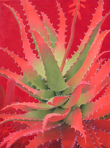 Red Agave art print by Sharon Weiser for $38.75 CAD