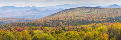 Autumn In Vermont art print by Brenda Petrella Photography LLC for $41.25 CAD