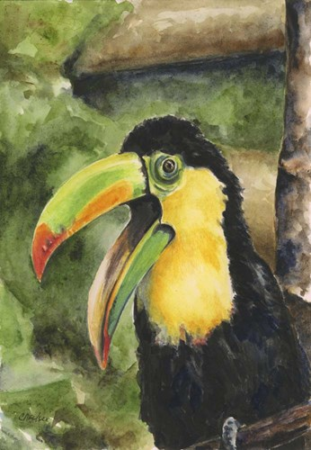 Toucan Bill art print by Charlsie Kelly for $70.00 CAD