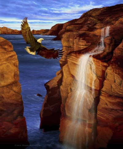 Canyon Eagle art print by Chris Dobrowolski for $55.00 CAD