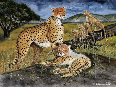 Cheetah Family art print by Eileen Herb-Witte for $53.75 CAD