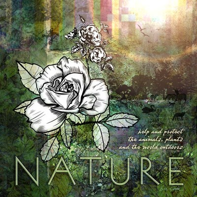 Nature art print by Evie Cook for $48.75 CAD