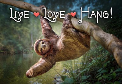 Live Love Hang art print by Evie Cook for $45.00 CAD