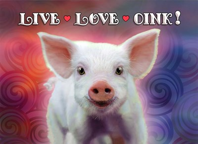 Live Love Oink art print by Evie Cook for $40.00 CAD