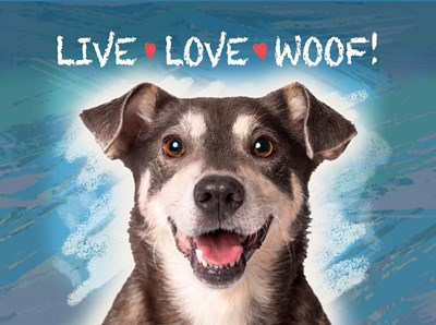 Live Love Woof art print by Evie Cook for $41.25 CAD