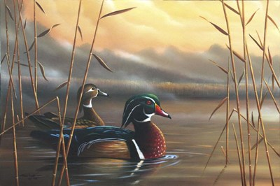 Wood Ducks art print by Geno Peoples for $43.75 CAD