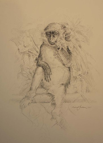 Monkey Sketch art print by Michael Jackson for $42.50 CAD