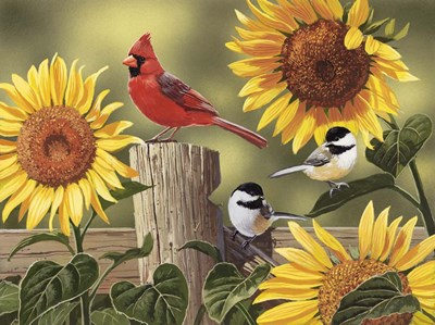Sunflowers and Songbirds art print by William Vanderdasson for $41.25 CAD