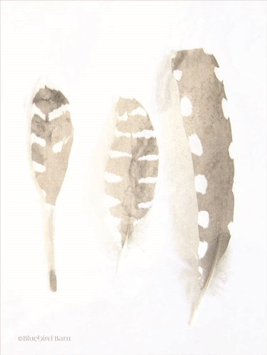Neutral Feathers Study art print by Bluebird Barn for $67.50 CAD