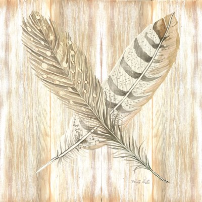 Feathers Crossed II art print by Cindy Jacobs for $56.25 CAD