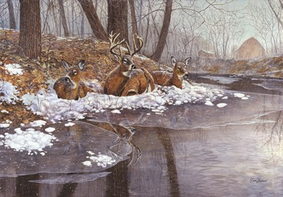 Creekside art print by Jim Hansel for $45.00 CAD