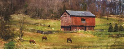 Grazing art print by Kathy Jennings for $36.25 CAD